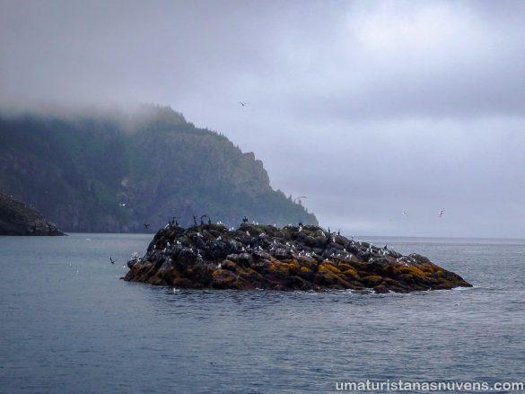 O que fazer no Alasca em 4 dias - cruzeiro geleiras